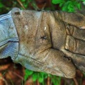 Do leather gloves protect from electric shock?